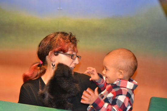 Mississippi Children's Museum: Make your own puppet show!