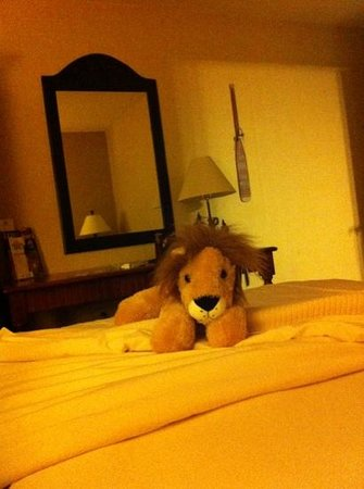 Stoney Creek Hotel & Conference Center - Galena: My sleeping partner tonight.