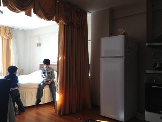 Mataraci Apart Istanbul: fridge