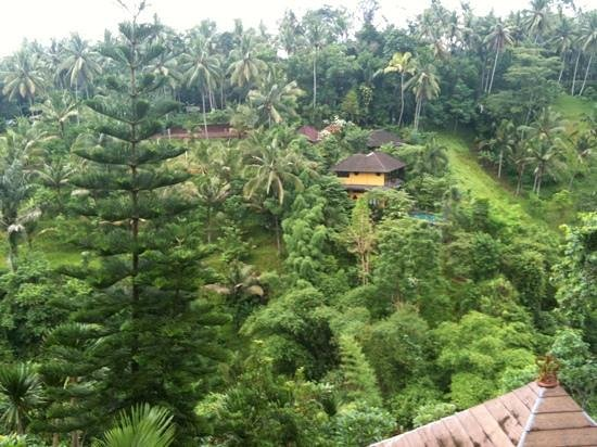 Graha Moding Villas: view from balcony room 4