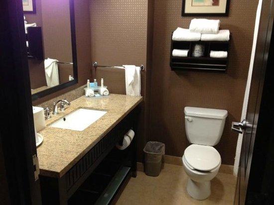 Holiday Inn Express Hotel & Suites Huntsville: Bathroom @ Yhe Holiday Inn Express & Suites, Huntsville TX