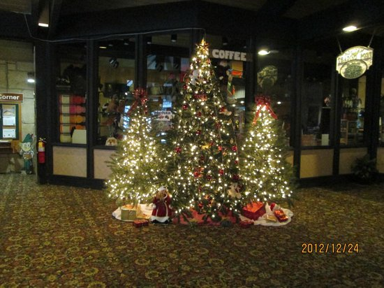 Mohican Lodge and Conference Center: Oh Christmas tree!