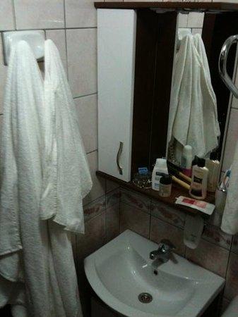 Atasu Hotel : Standart oda - Banyo