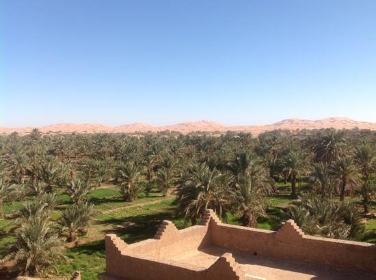 Riad Nezha: From the terrace of the hotel.