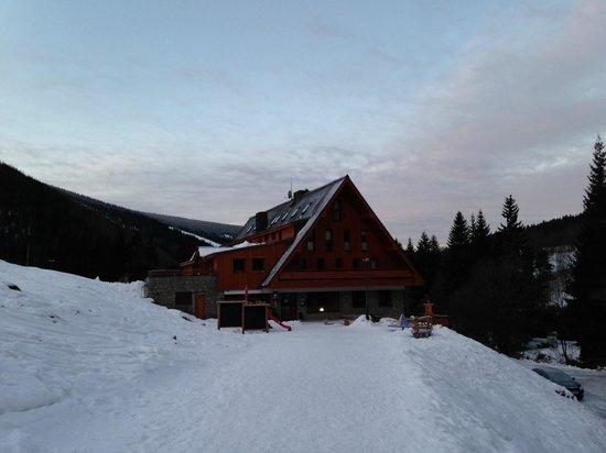 Ski Hotel Stoh: pohled ze sjezdovky