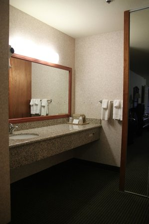 Comfort Inn Yosemite Area : L'anti bagno
