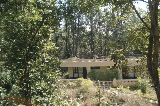 Asteya Kanha: Our Cottage