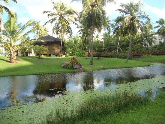 Sauipe Resorts: Vista maravilhosa, muitos animais exóticos