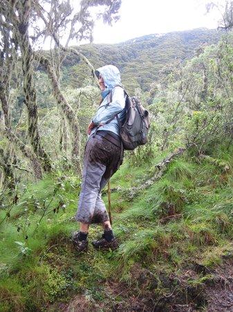 Mount Sabinyo: MUD