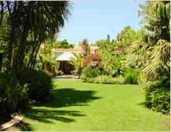 Treetops Guest House: Garden