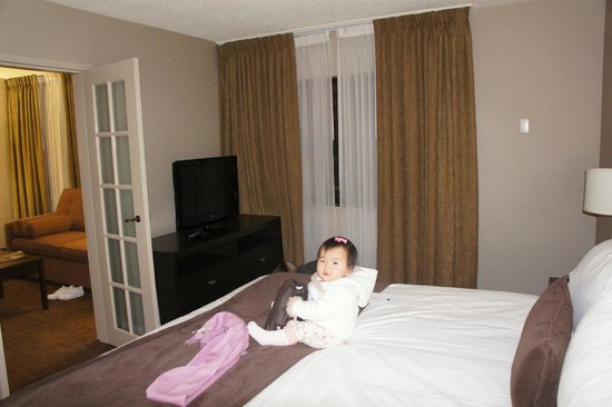Delta Hotels by Marriott Calgary Airport In-Terminal: TV in bedroom