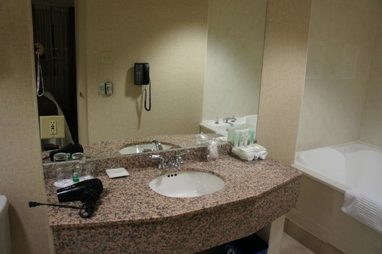 Delta Hotels Calgary Airport In-Terminal: Sink