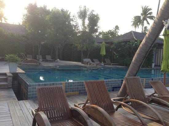Tango Luxe Beach Villa: The pool