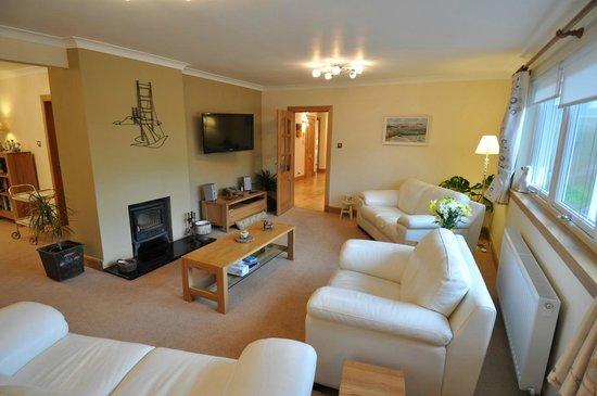Cramond Lodge B&B: Main lounge with wood burning stove fireplace and TV