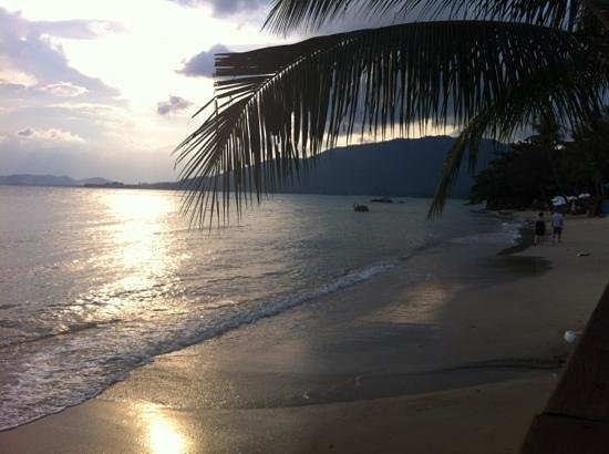 Samui Tonggad Resort: sunset at the beach as seen from the restaurant. evening was the only time we had any sand to sp