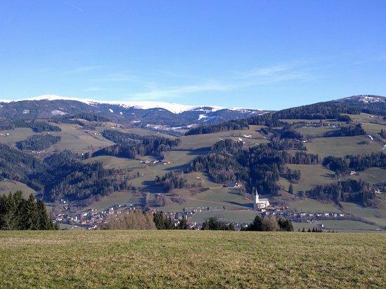 Hotel Moselebauer: panorama