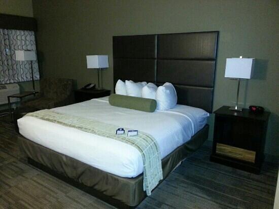 BEST WESTERN Plus Night Watchman Inn & Suites: King room