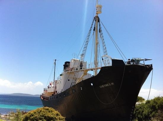 Discovery Bay Tourism Experience: old whaling boat