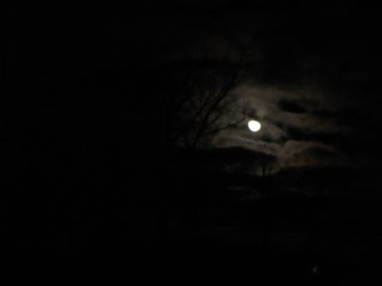 Potawatomi Inn and Conference Center: Moonlight on a January night