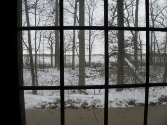 Potawatomi Inn and Conference Center: The lake and woods from the historic cabin