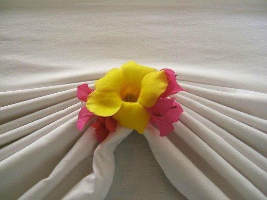 Hotel Paraiso del Cocodrilo: Mit Liebe gemacht