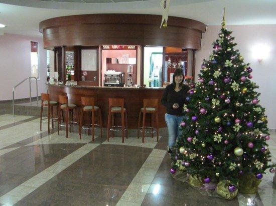 Hotel Mirna - LifeClass Hotels & Spa: BAR DELL'ALBERGO