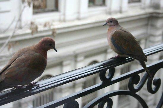 """Nowy Efendi Hotel """"Special Class"""": Mini balcón en la habitación"""