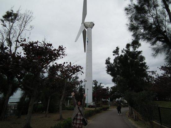 Chatan Park : 北谷公園