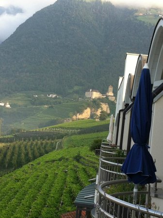 Hotel Castel: View of Vineyards & Orchards, Castle, Right