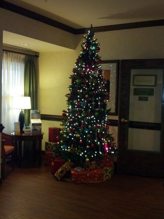 Country Inn & Suites by Radisson, Concord (Kannapolis), NC: Christmas tree at entry