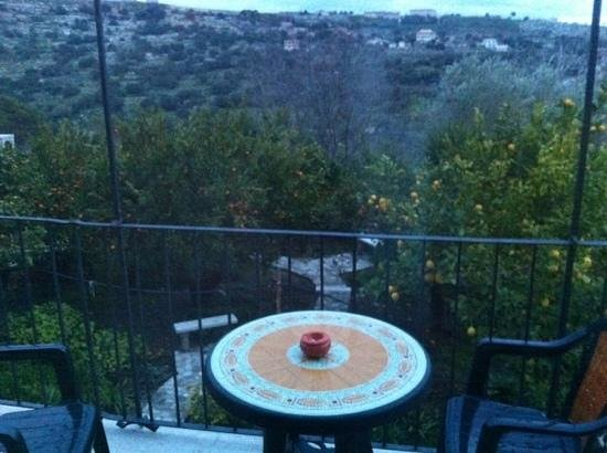 Il Giardino dei Mandarini: giardino