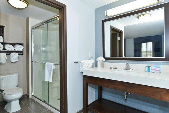 Hampton Inn & Suites Columbia/Southeast-Ft. Jackson: Studio Suite Vanity Area