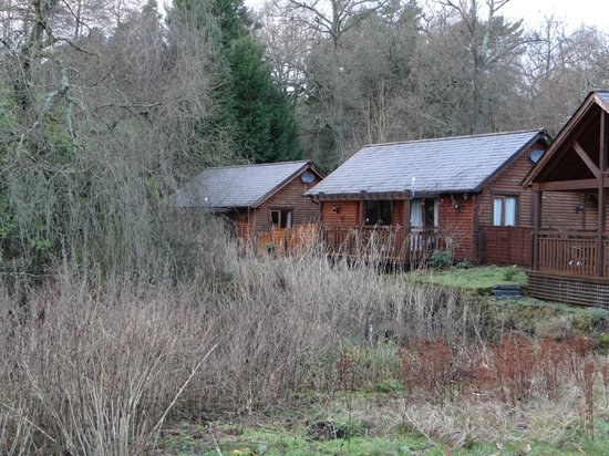 Tilford Woods Lodge Retreat: Lodges