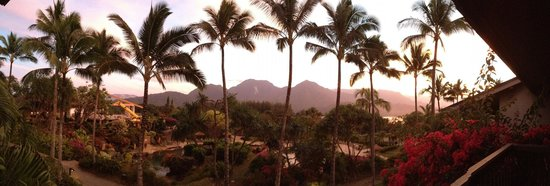 Hanalei Bay Resort: palm trees