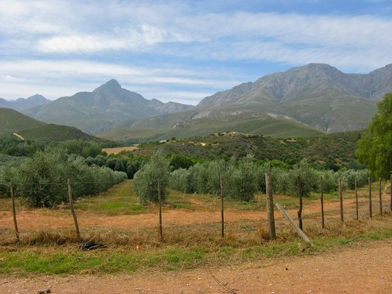 Thabile Lodge: Beautiful valley