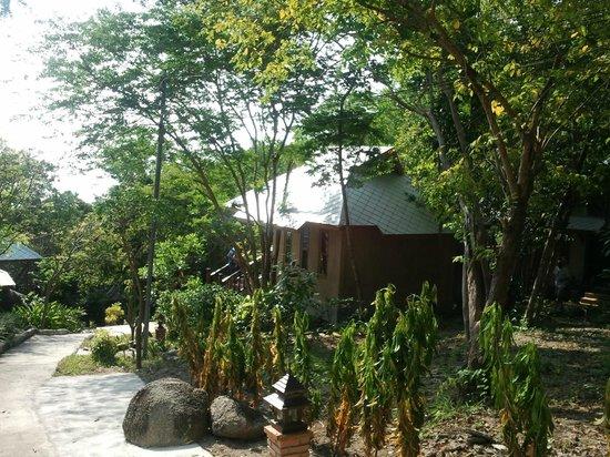 ตะโหนด วิลล่า ฮิลล์: bungalow