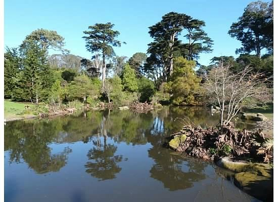 Romantic guide to san francisco travel guide on tripadvisor for San francisco botanical garden hours