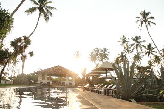 Paradise Road The Villa Bentota : pool area