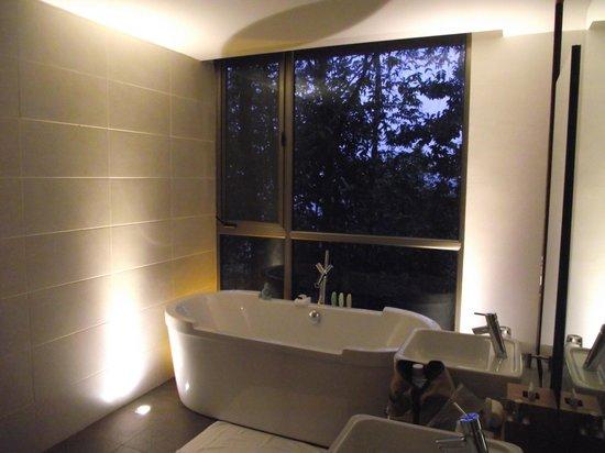 Mashpi Lodge: Bathroom Window at Dawn
