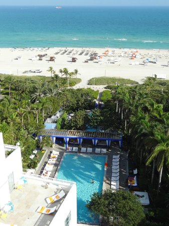 Shore Club South Beach Hotel: View of the pool and beach from the room