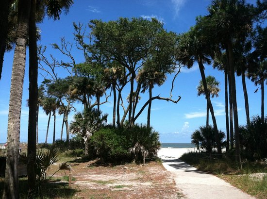 Hunting Island State Park: Paradise Found! (Reminds you of Gilligan's Island doesn't it?)