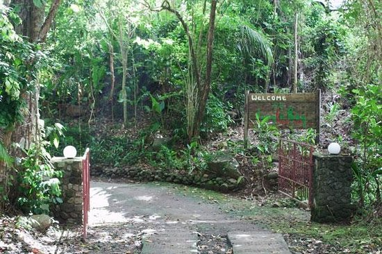 Jungle Bay, Dominica: Eingang zum Jungle Bay Resort