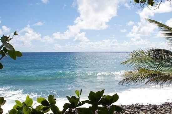 Jungle Bay, Dominica: Strandbereich Jungle Bay Resort