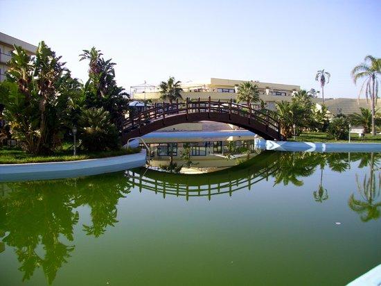Hotel Club Residence Roscianum:                                     Piscina, Solarium