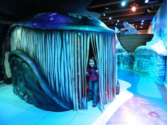 Het Scheepvaartmuseum| The National Maritime Museum: נכנסים ללויתן