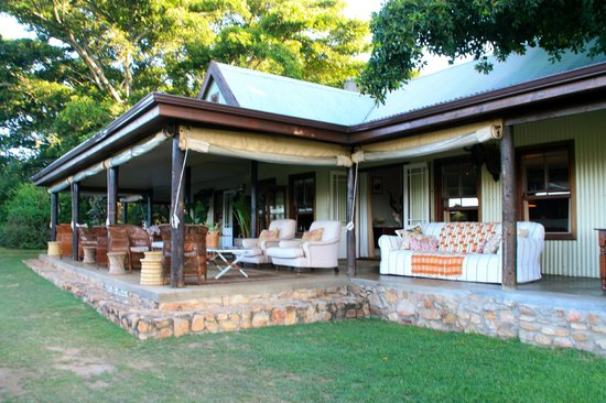 Camp Figtree: wonderful terrace