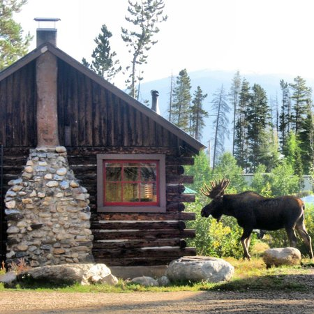 Colorado Cabin Adventures   UPDATED 2018 Prices U0026 Campground Reviews (Grand  Lake)   TripAdvisor