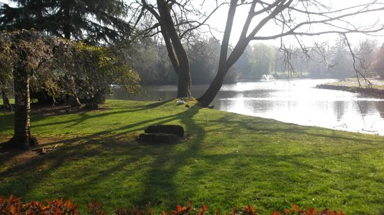 Longton Park : view of the lake