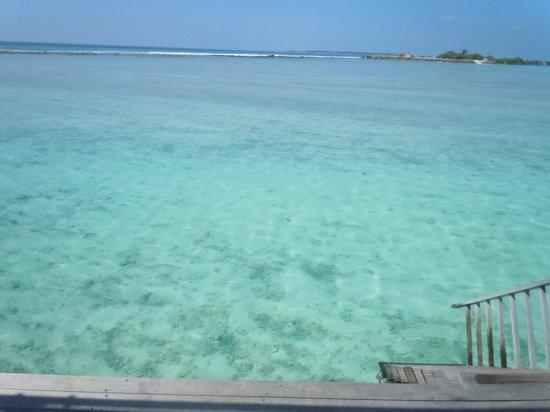 Paradise Island Resort & Spa: la vue du Jaccuzi