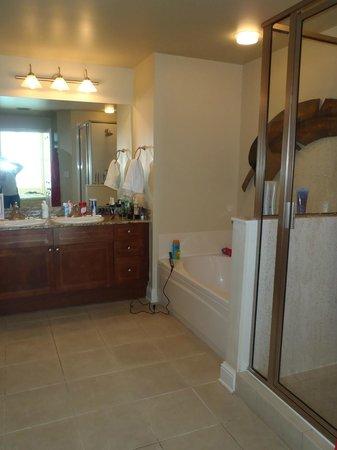 Aqua: Master Bathroom in our Condo
